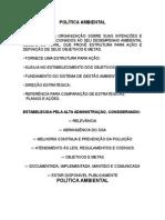 11 Política Ambiental