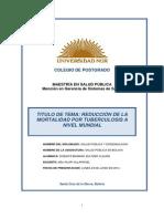 Trabajo Final Salud Pública en Bolivia - D. Sultzer