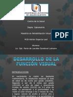 Desarrollo de La Función Visual_Lourdes Sandoval