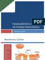 Fundamentos de La Actividad Fisiologica La Celula