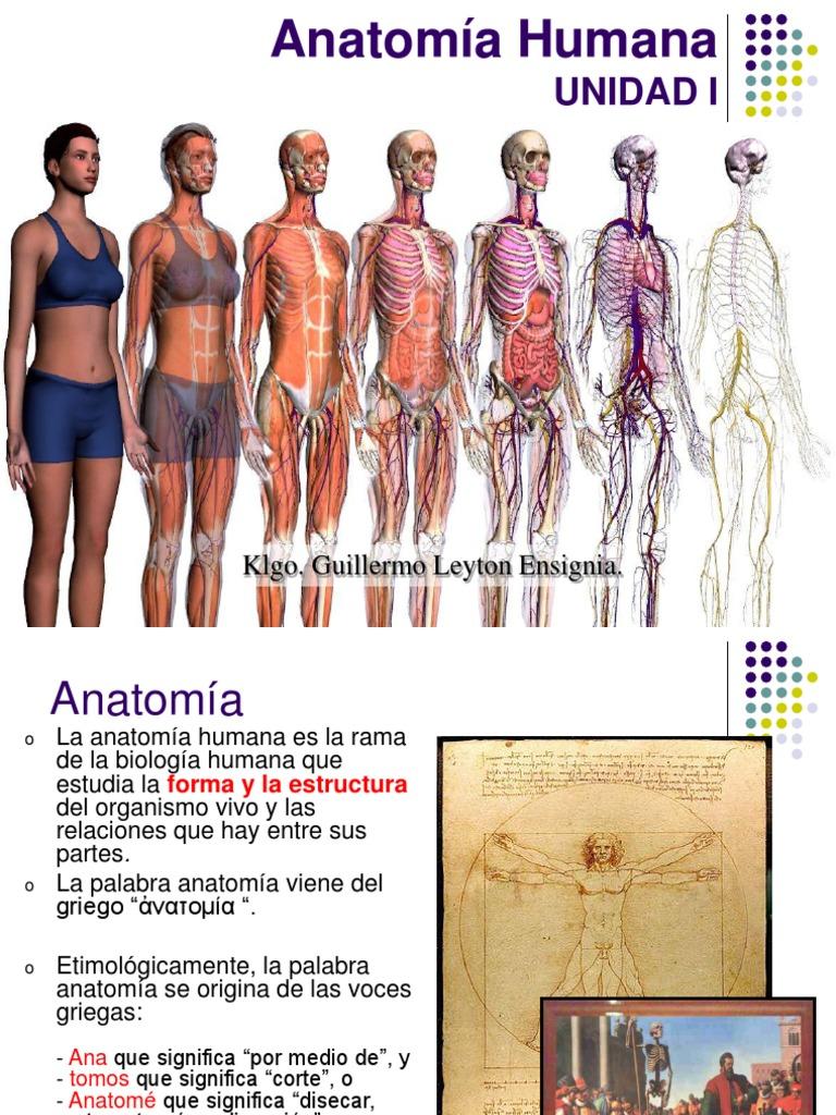 UNIDAD 1 - Clase 1 -Generalidades de Anatomía