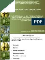 TCC_apresentação_paloma.pptx
