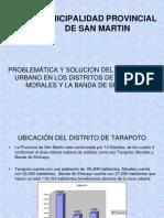 Sv Municipalidad de Tarapoto Exposicion
