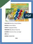Informe de Campaña de Lima - Propaganada Politica