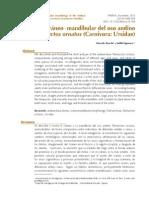 Stucchi y Figueroa 2013 - Morfología cráneo-mandibular del oso andino.pdf