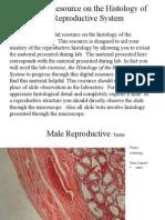Reproductive Histology