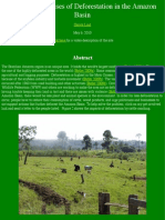 impacts and causes of deforestation in the amazon basin