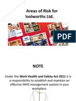 Key Areas of Risk for Woolworths Ltd.