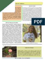 Revista Conchucos 2 PDF