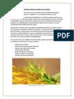 6 medidas para fomentar la fauna auxiliar en el cultivo.pdf
