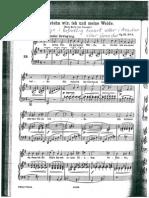 Brahms So Steh Wir (1)