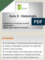 Aula 2 - Osteologia