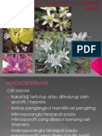 PPT= Angiospermae