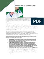 Capítulo 24 - Aspectos Práticos 3, Notas, Tilt, Ferramentas e Tempo.doc