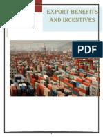 International Marketing Export Incentives Final