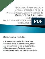 Professor César Augusto Venâncio Da Silva Membrana Celular