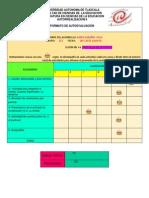 Formato Autoevaluacion 5 y 6 de 15