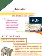 12dolor-articular470