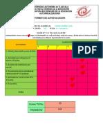 Formato Autoevaluacion 7 y 8 de 15