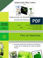 Biodiesel de Palma
