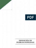 Definición de pueblos indígenas.pdf