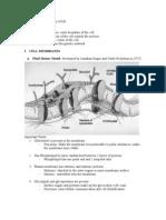 CELLS- Functional Units of Life BASIC PARTS 1. Plasma Membrane