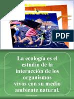 Medio Ambiente Sociedad en Riesgo Wmr