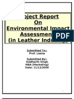 Environmental Impact Assessment- Report
