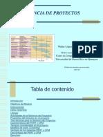 Gerencia de Proyectos Walter López Revnov2007
