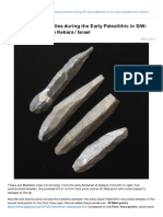 Aggsbach.de-denominating Lamelles During the Early Paleolithic in SWAsia Examples From Kebara Israel