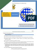 Guia Proyecto.pdf