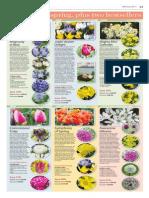 Steve Whysall's Vancouver Sun Garden Collections
