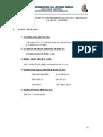 Modelo - Perfil Mejoramiento de Pistas y Veredas Bnos Aires
