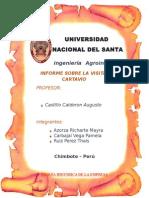 CARTAVIO (1)
