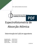 Relatório Exp.2- Espectofotometria de Absorção Atomica FINAL