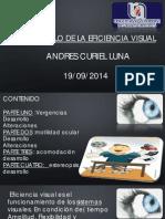 Presentación eficiencia visual.pdf