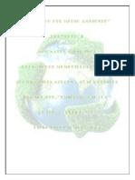 EL-CUIDADO-DEL-AMBIENTE-PROYECTO1.pdf
