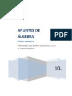 Apuntes de Álgebra