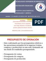 caracteristicas_presupuestos