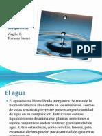 El Agua en La Bioquimica