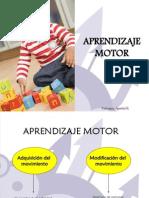 Aprendizaje Motor