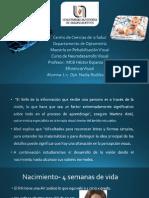Eficiencia visual_Nadia Rodiles.pdf