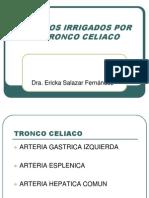 Organos Del Tronco Celiaco.ericka