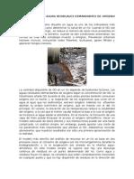 El Efecto de Las Aguas Residuales Demandantes de Oxígeno en Los Ríos