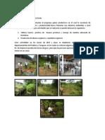 PROGRAMA PATIOS PRODUCTIVOS - leticia amazonas.docx