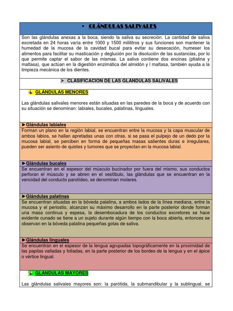GLÁNDULAS SALIVALES1