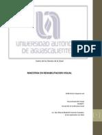 Desarrollo Eficiencia Visual_unidadV_Blanca Guzman