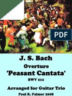 Bach Peasant Cantata Overture Bwv 212 Trio