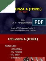 Penyuluhan Influenza a (h1n1)/Flu Babi