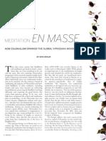 Meditation en Masse Erik Braun